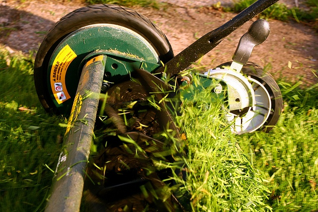 how much to charge for lawn mowing service