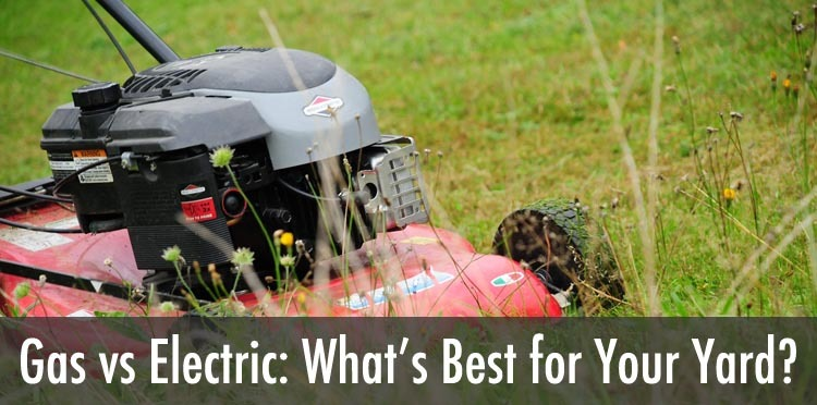 electric vs gas powered mowers