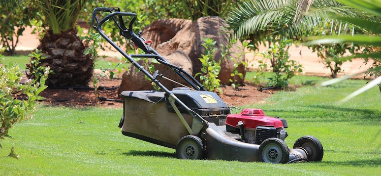 gas powered push mower