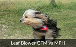choosing the right leaf blower cfm